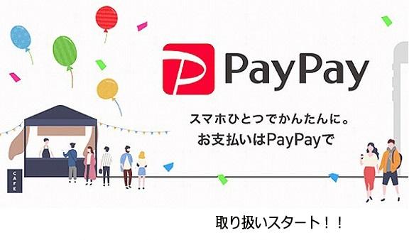 paypay0005.jpg