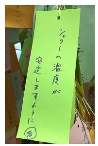 tanabata07.jpg