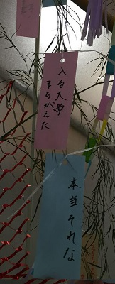 tanabata201705.jpg